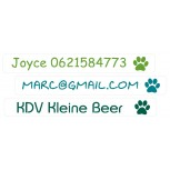 Mini Vinyl Labels Paw Transparent